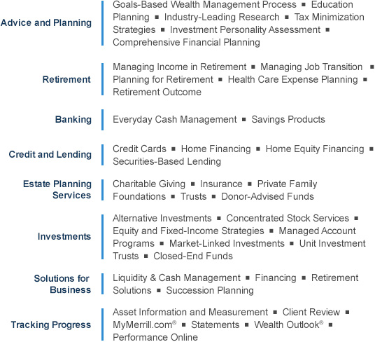 merrill lynch pmd business plan template